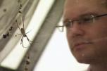 Regard sur une araignée